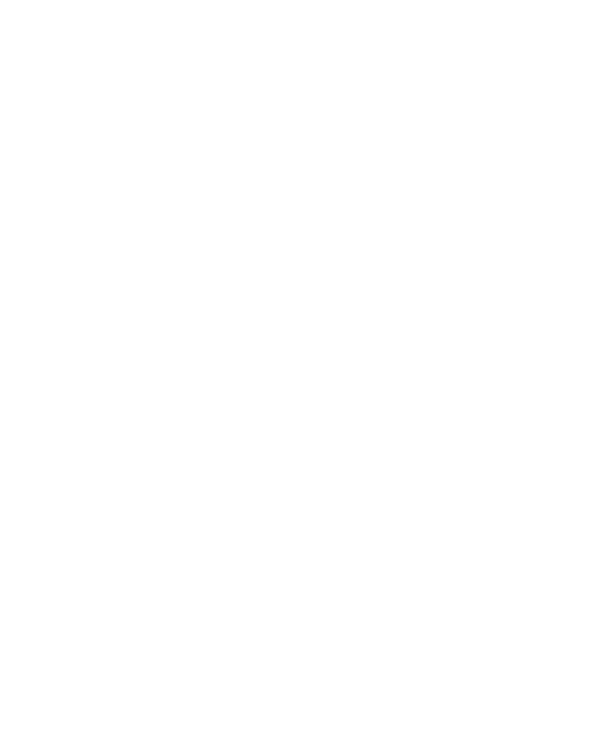 Yellow Bird Visuals